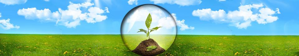 eco-how-ecoplanet-works